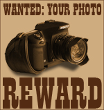Wanted: Your Photo